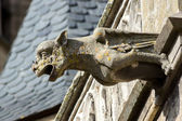 Gargoyle sculture on medieval cathedral. Mirepoix. — Photo