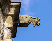 Gargoyle sculture on medieval cathedral. Mirepoix. — Stock Photo