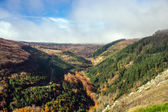 Autumnal lanscape in french mountains — Stock Photo