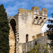 Medieval queen fortress in Tarascon, France. — Stock Photo