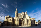 Beautiful medieval cathedral in Carcassonne — Stockfoto