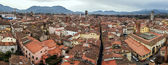 Panoramic view of Lucca, Italy — Stock Photo