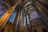 Majestic Carcassone cathedral interiors. Sun light. — Photo