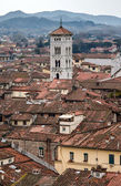 Panoramic view of Lucca, Italy — Stok fotoğraf