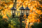 Old-fashioned lamps in the garden — Stock Photo