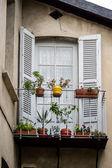 Clássico decorado francês janela com flores — Foto Stock