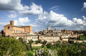 Siena panoramic view — Stock Photo
