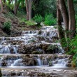 Small waterfall on forest river — Stock Photo #49594167
