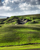 Beautiful green hills in Tuscany — Foto Stock