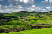 Beautiful green hills in Tuscany — Stockfoto