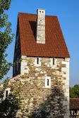 Eski ortaçağ kalesi-Budapeşte, Macaristan. — Stok fotoğraf
