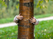 Little girl hide over the tree — Stock fotografie
