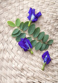 Butterfly pea , blue pea on weaving background — Stock Photo