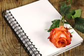 Open Notebook with Red Rose  — Stock Photo