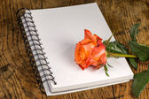 Notebook and rose flowers on a wooden surface  — Stock Photo