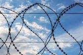 空を背景に鉄線 — ストック写真