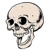 Head skull — Stock Vector