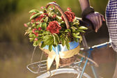 Beautiful landscape image with bicycle and flower at sunset — Stock Photo