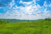 Background landscape field of green grass and blue sky morning — Stock fotografie
