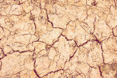 Achtergrond droge bodem met scheuren — Stockfoto
