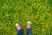 Vivid background sneakers on grass — Stock Photo