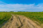 Scenic landscape background green meadow blue sky and a wide rur — Stock fotografie