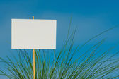 Background blank advertising space in the green grass  — Stock Photo