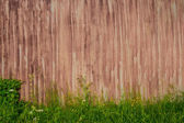 Background brown blank metal fence overgrown with tall grass  — Stock Photo