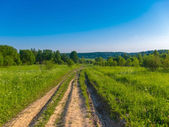 Background picturesque landscape green field blue sky and wide c — Stock fotografie