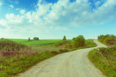 Landscape country road running through the field.  — Stock fotografie