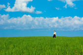 Background landscape girl walking in field of green grass  — ストック写真