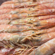 Close up of raw frozen Argentina red shrimps — Stock Photo #51552335