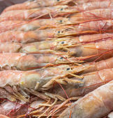Close up of raw frozen Argentina red shrimps  — Stock Photo