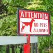 No pets allowed sign on gate in the park — Stock Photo #51565349