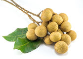 Organic fresh longan isolated picture  on white background — Stock Photo