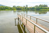Stainless steel bridge or pier at lake   — Stock Photo