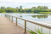 Ponte in acciaio inox o molo sul lago — Foto Stock