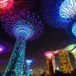 SINGAPORE -May 24: Night view of Supertree Grove at Gardens by the Bay on May 24, 2014 in Singapore. Spanning 101 hectares of reclaimed land in central Singapore, adjacent to the Marina Reservoir — Stock Photo #51385533