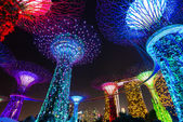 SINGAPORE -May 24: Night view of Supertree Grove at Gardens by the Bay on May 24, 2014 in Singapore. Spanning 101 hectares of reclaimed land in central Singapore, adjacent to the Marina Reservoir — Stock Photo