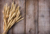 Sheaf of wheat ears — Stock Photo