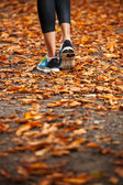 Young woman running in the early evening autumn leaves — Stok fotoğraf