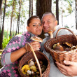 Couple picking mushrooms in the forest — Stock Photo #50692955