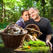 Couple picking mushrooms in the forest — Stock Photo #50693457