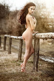 Sexy woman at fence — Stock Photo