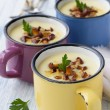 Potato cream soup with wild mushrooms — Stock Photo #49284233