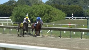 Horse Race — Stock Video