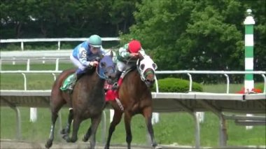 Horse racing slow motion — Stock Video