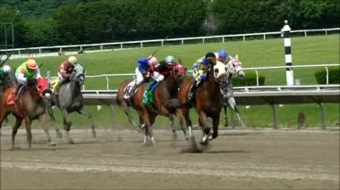 Horse Race crosses the finish line — Stock Video
