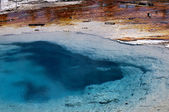 Geothermic pools in Yellowstone National Park in the USA — Stock Photo