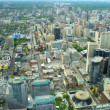 View from the top of the CN Tower in Toronto Canada — Stock Photo #50131787